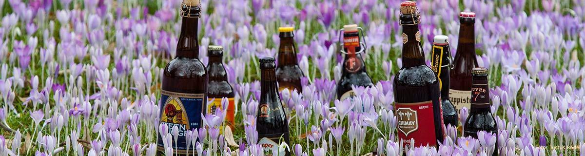 Belgische Biersorten in Krokusfeld